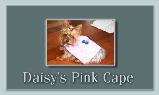 Daisy's Pink Cape thumbnail