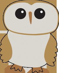 iPad owl